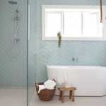 Viridian Glass: Frameless Shower Screen and Window Glass