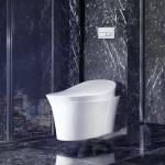 Seren-Bidet: KOHLER VEIL Integrated Bidet Toilet