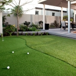 The Landscape Guys: Artificial Turf Golf Putting Green